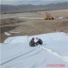 复合土工膜 两布一膜 人工景观湖河道 蓄水池 水库护坡防水土工布