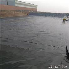 鱼塘防渗膜/ 养殖专用膜/藕池土工膜/黑色塑料薄膜
