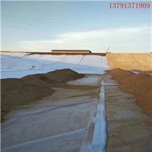 复合土工膜 两布一膜 一布一膜 鱼塘河道护坡 防渗膜防水土工布