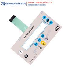 薄膜开关产品 仪器仪表薄膜开关 智德兴 薄膜开关品牌