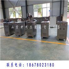 服装熨烫行业配套生物质蒸汽发生器 燃气蒸汽发生器 电加热蒸汽锅炉价格优
