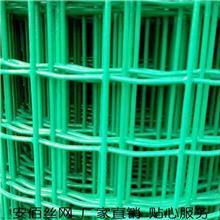 優質荷蘭網 圈地包塑鐵絲網 養殖圍網 大量現貨 支持定做