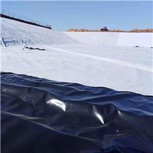 土工膜 防渗膜 鱼池鱼塘防水膜 养殖膜 藕池防渗专用黑色塑料薄膜