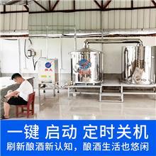 燃气酿酒设备 酿酒的设备 小型白酒烤酒设备价格 雅大不锈钢酿酒设备厂家直销