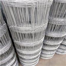 批发圈地牛栏网 草原养殖不锈钢铁丝网 生产热镀锌牛栏网实体厂家