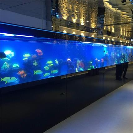 东莞可定做开放式超白玻璃生态展示鱼缸-华尔登国际酒店定制超白水晶玻璃鱼缸