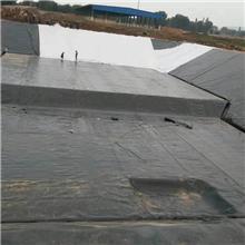 防渗膜鱼塘专用养殖防水膜蓄水池防水布沼气池藕池土工膜黑色塑料薄膜厂家