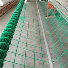 钢塑复合加筋带本地厂家_润杰_绿色钢塑爬藤网