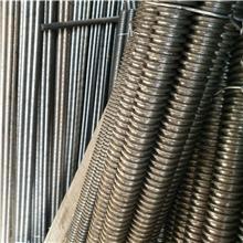 緊固件廠家直銷加工 國標絲桿 鍍鋅牙條吊桿 全螺紋螺桿全扣絲