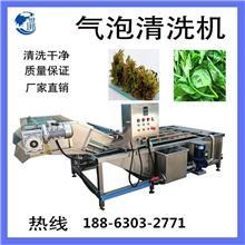 厂家直供龙须菜清洗机 大蒜清洗设备风干流水线 大蒜加工成套设备