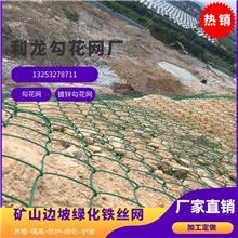 懷化勾花網鍍鋅勾花網綠化鐵絲網邊坡客土噴播綠化安裝廠家直銷