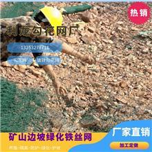懷化勾花網鍍鋅勾花網綠化鐵絲網礦山邊坡生態修復安裝廠家直銷