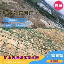 懷化勾花網鍍鋅勾花網綠化鐵絲網植被掛網綠化安裝廠家直銷