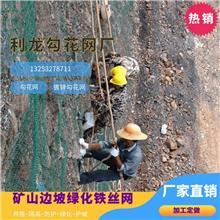 懷化勾花網鍍鋅勾花網綠化鐵絲網邊坡防護網價格廠家直銷