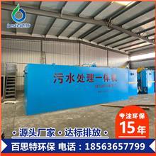 大蒜清洗污水处理设备 一体化污水处理设备 百思特 源头厂家