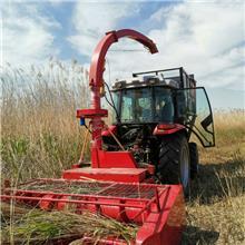 大型地滚刀式牧草收割机玉米秸秆粉碎青储机油菜杆皇竹草通用