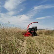 地滚刀青储机玉米秸秆小麦秸秆以及其他牧草工作量达到300亩
