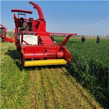 大型地滚刀式牧草青贮收割机玉米秸秆粉碎青储机油菜杆皇竹草通用