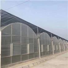 天津生产厂家生产规格多样薄膜连栋大棚坚固耐用连栋大棚可供全国