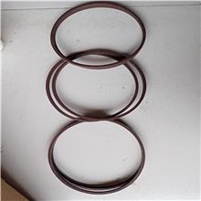 斯特封 ST型孔用格莱圈 活塞杆用斯特封密封圈 其他橡胶密封件