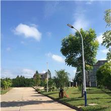 定制户外太阳能LED路灯道路灯锂电池6米7米8米10米农村照明路灯