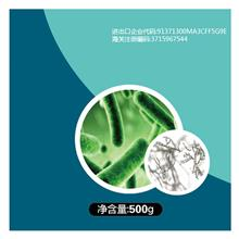 百亿活菌农用种植有机肥料菌剂通用花卉瓜果树蔬菜复合微生物菌肥