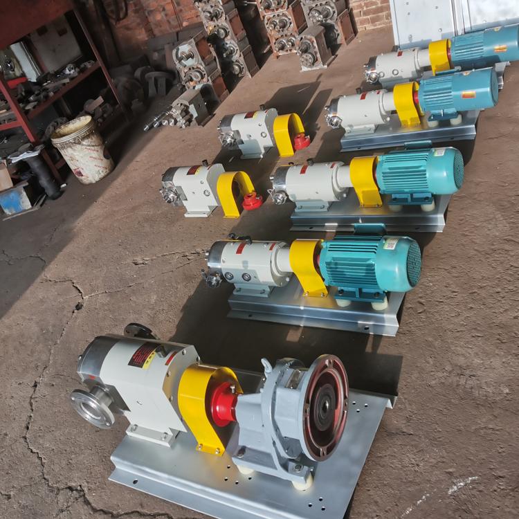 高粘度凸轮转子泵,TLB凸轮转子泵,变频调速转子泵