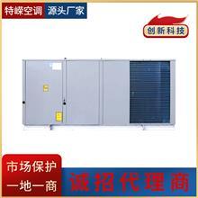 屋顶式空调机组 制冷制热直膨式屋顶机 中央空调主机