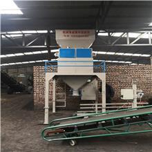 60公斤编织袋粮食定量包装机 生瓜子定量包装机 黄豆自动颗粒定量包装机