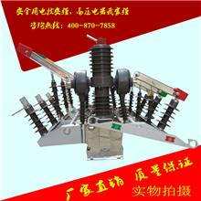双电源真空断路器 ZW32-12GG 双电源切换装置 双电源真空断路器
