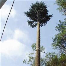 仿生松树 棕榈树通讯塔 仿生树 铁松树 仿生树 仿生树塔