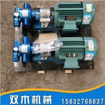 KCB-200齿轮泵 保温型沥青加热泵 YCB立式圆弧齿轮泵 来图订制
