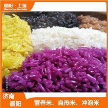 方便米饭机器 即食米营养米生产设备 晨阳机械源头厂家