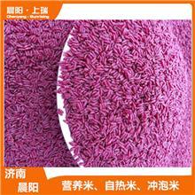 自热速食方便米饭生产机器 即食米营养米生产设备 晨阳机械诚信厂家
