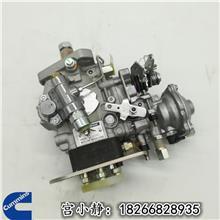东风康明斯燃油喷射泵C3960900燃油泵