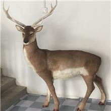 达州利萌工艺品厂家 大量供应仿真动物 订制