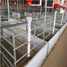 河北母猪产床 复合板加厚母猪产床 2.2*3.8米 标准欧式猪产床 尺寸多可定制