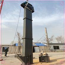工地垂直提升上料机 沧州ne斗式提升机 钢丝胶带斗式提升机