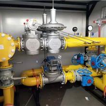 天然气调压撬 燃气调压撬 CNG减压撬箱 燃气调压箱 调压稳压器  河北端星