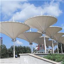 上海设计安装大型膜结构建造工程 孔睿 公路两旁膜结构太阳能路灯 膜结构公路设施安装