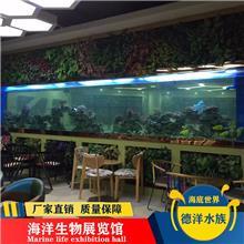 大型海水压克力观赏鱼水族箱厂家_广州定做特种玻璃圆柱形亚克力鱼缸