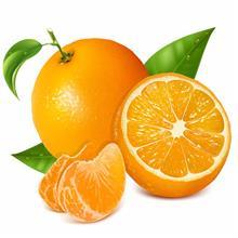 椰果罐头 橘子罐头 葡萄罐头 _规格齐全