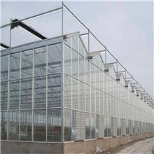 民权玻璃板温室大棚工程 聚晟邦 新乐温室大棚玻璃