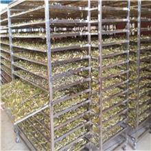金银花烘干机 玉米烘干设备 辽宁农副产品烘干箱 臻阳烘干设备