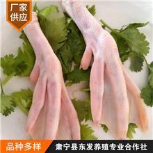 长期供应冷冻鸭掌 冷冻冰鲜鸭掌 冷冻生鸭爪 严格选材 放心选购