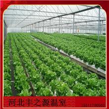 温室大棚  日光温室暖棚  河北丰之源蔬菜薄膜棉被无后墙大棚