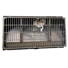 平城塑料养殖通风窗 养殖场猪场鸡舍通风小窗