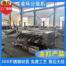 红枣分级机 自动分选机 转盘式分拣机 西藏红枣分级机 食环自动化设备