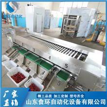 不锈钢红薯清洗分级机 苹果重量分选机 转盘式分拣机 西藏不锈钢红薯清洗分级机 食环自动化设备
