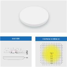 智能疏散系统 智能疏散照明灯 应急照明灯 吸顶灯 大成智慧